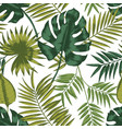 elegant seamless pattern with leaves of tropical vector image