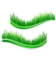 Green grass waves vector image
