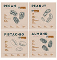 nutrition facts of nut pecan peanut pistachio vector image vector image