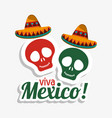 viva mexico skulls hat design vector image vector image