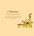autumn season greeting card composition decorated vector image