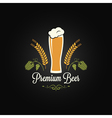 beer glass hops design background vector image