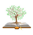 book tree vector image vector image