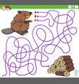 educational maze game with cartoon beaver vector image vector image
