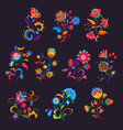 mexican flowers or florals bright blooming plants vector image vector image