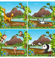 set of wild animal in nature scene vector image