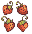 strawberry collection vector image vector image