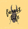 a vintage brown deer beetle emblem on a yellow vector image vector image