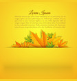 abstract light seasonal autumn template vector image vector image