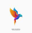 bird colorful concept design idea template vector image