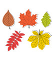 Hand drawn autumn leaves collection set