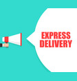 male hand holding megaphone with express delivery vector image