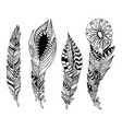 mandala style feathers set collection creative vector image vector image