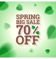 spring big sale banner on green background vector image vector image