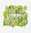 summer forest with rainbow on white background vector image vector image