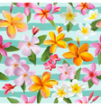 Tropical Flowers and Leaves Geometric Background vector image vector image