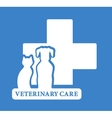 veterinary care icon with white pet vector image vector image