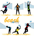 beach volley vector image