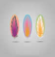 bright element set of colorful feathers vector image vector image