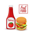 fast food collection hamburger and ketchup vector image vector image