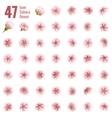 Sakura cherry icon set of 47 flower EPS 10 vector image vector image