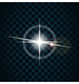 sparkle light star 5 vector image vector image
