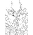 adult coloring bookpage a cute head antilope vector image