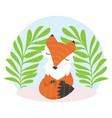 cute fox cartoon fox flat style vector image