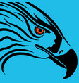 head of eagle over blue vector image vector image