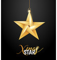 origami paper christmas holiday star vector image vector image