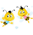 two bees flying cartoon isolated on white vector image