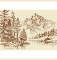 alpine landscape river and pine forest sketch vector image vector image