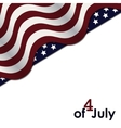 American Flag Independence Day vector image