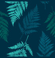 fern leaf seamless pattern background vector image