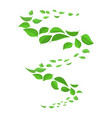 flying green leaves in wind vector image vector image