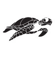graphic turtle vector image