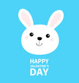 happy valentines day white bunny rabbit hare face vector image vector image