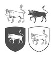 logo of bull coat of arms heraldry vector image vector image