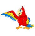 Macaw wing bird with blank sign vector image vector image