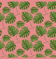 monstera plant seamless pattern on a pink vector image