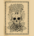 wiccan emblem with skull human hands rose flower vector image