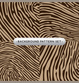 background pattern set collection vector image vector image