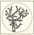 Coral vintage black vector image vector image