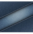 diagonal jeans with stripe vector image vector image