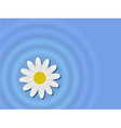Flower on the water vector image