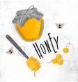 honey elements vector image
