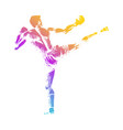 kick boxer vector image
