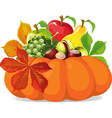 pumpkin with autumn leaves vector image vector image