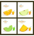 Fruit juices vector image