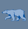 bear polar animal mammal teddy grizzly vector image vector image